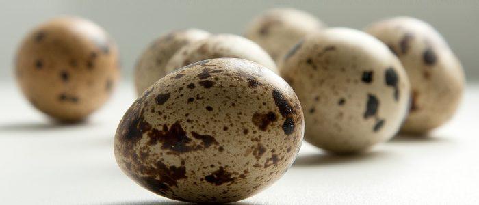Перепелиные яйца при повышенном холестерине